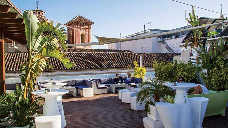 La Terraza Oasis Rooftop Bar In Malaga The Rooftop Guide